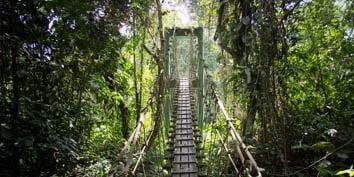 Journey into Sarawak