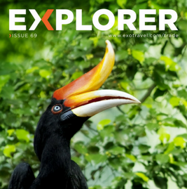 Download Explorer #69