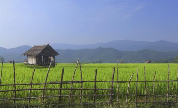 Mini-Multisport Chiang Mai Adventure