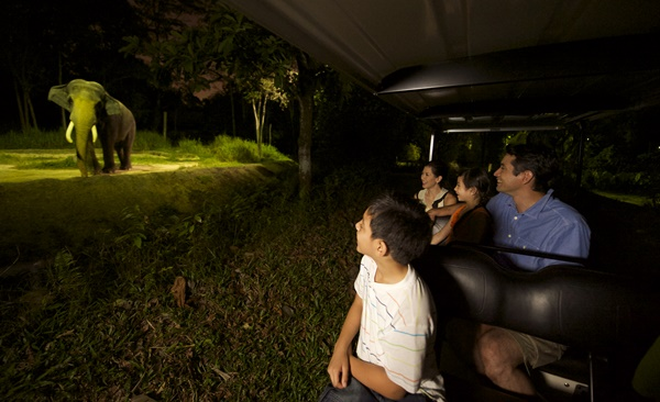 Tour Highlights for Singapore for Families