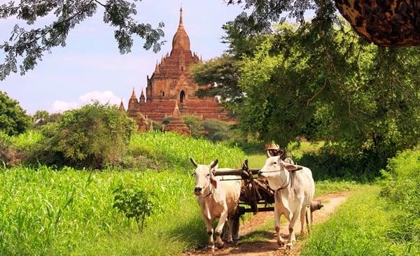 Cycling Middle Burma, Mandalay to Bagan