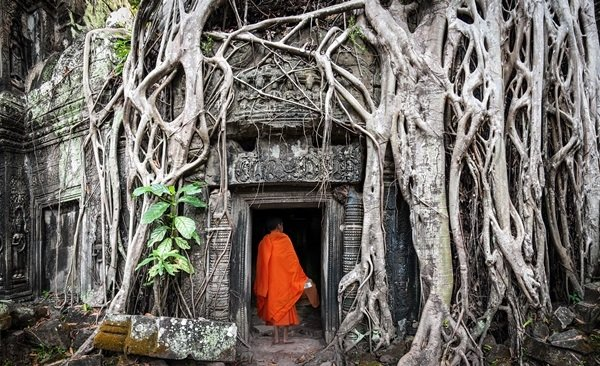 Tour Highlights for Angkor Family Holiday
