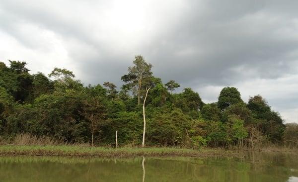 Back to Nature – Ulu Muda Escape