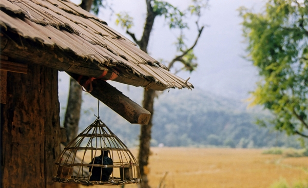 Green Tour of Laos