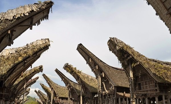 South Sulawesi: Toraja Discovery