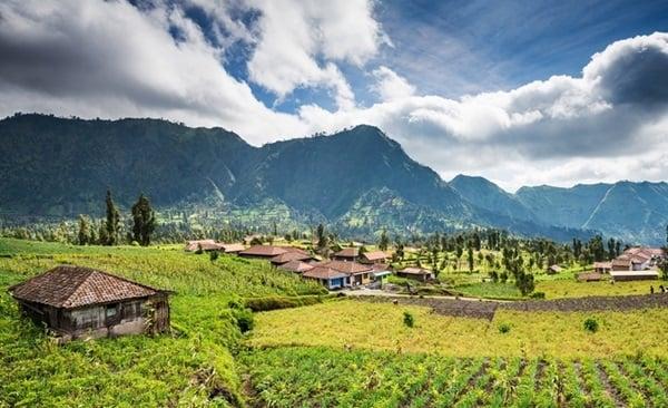 Highlights of East Java