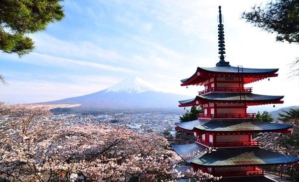Tour Highlights for Lake Kawaguchiko Hike and Onsen