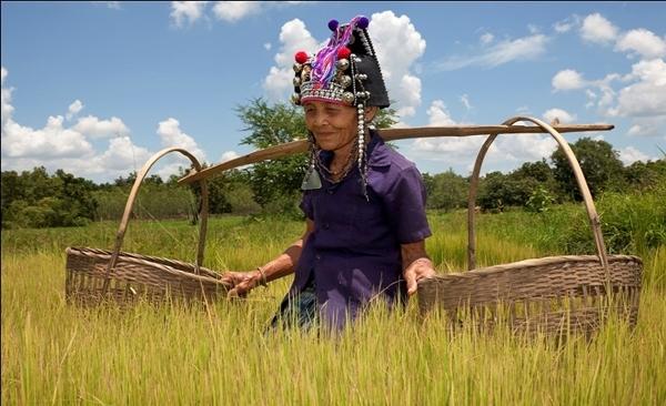 Luang Prabang on the Kids Path