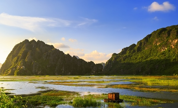 Wildlife Discovery, Cuc Phuong National Park & Ninh Binh