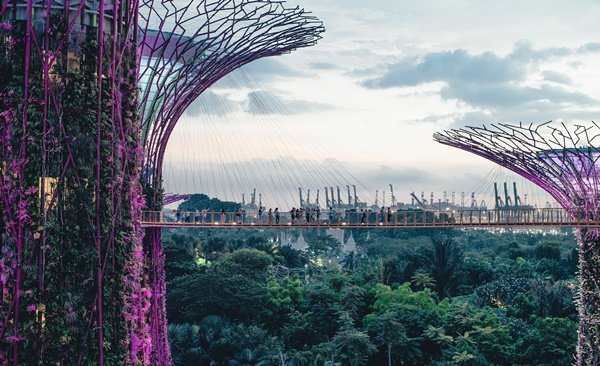 Tour Highlights for Best of Singapore