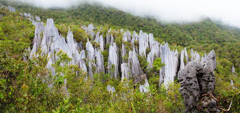 Photo of Trek the Headhunters Trail, Malaysia