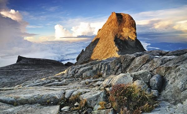 Trekking Challenge : Mount Kinabalu Jungle to Mountain