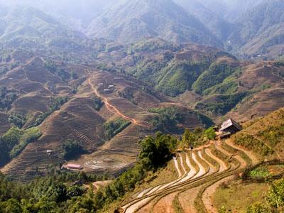 3164447_stunning-rice-terrace-landscape-near-sapa-vietnam1