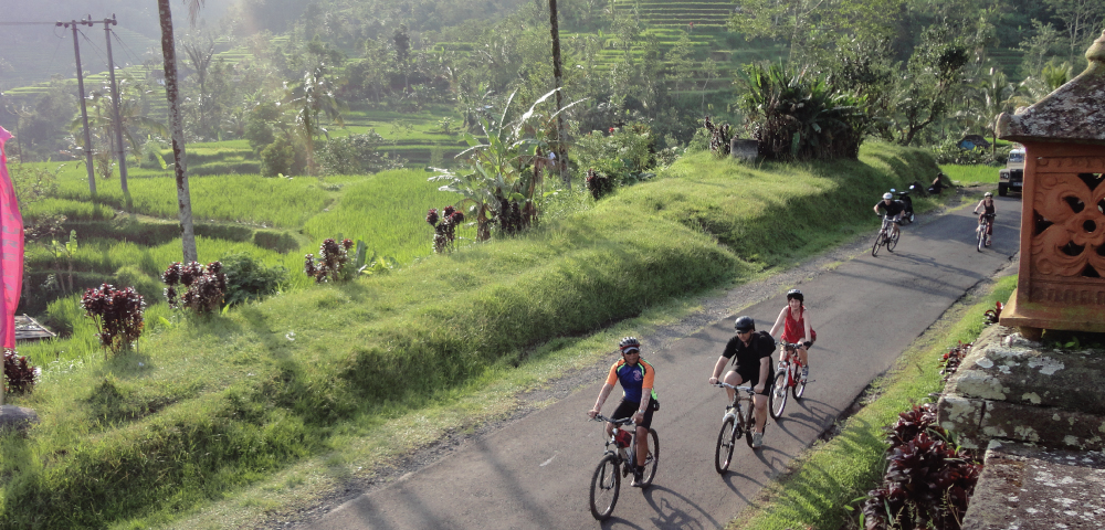 Bali Biking Two Lakes and Terrace Paddies (7 Days / 6 Nights)
