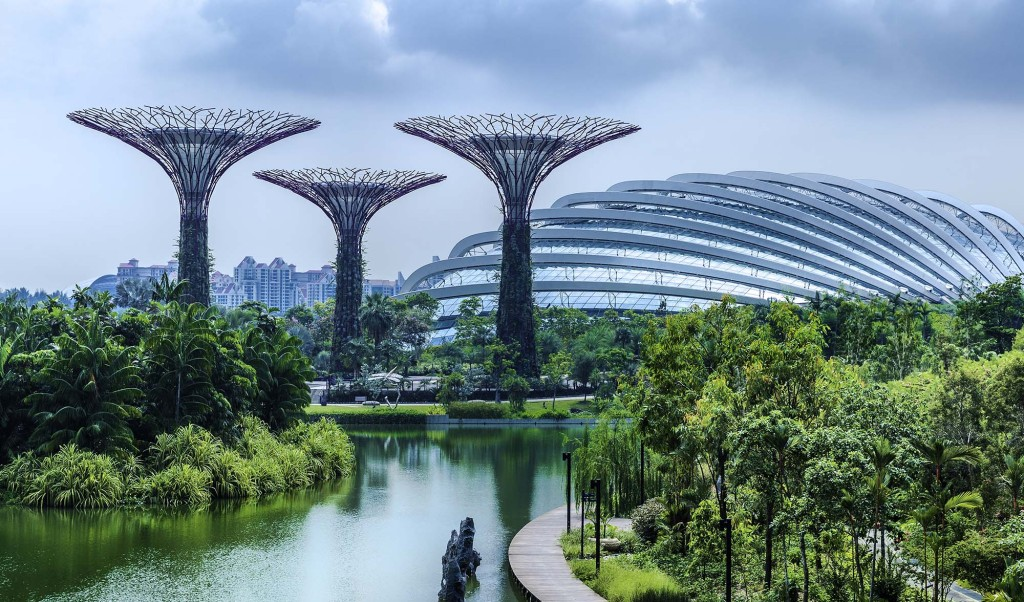 Singapore's 'supertrees' put a whole new spin on sustainable attractions within the city
