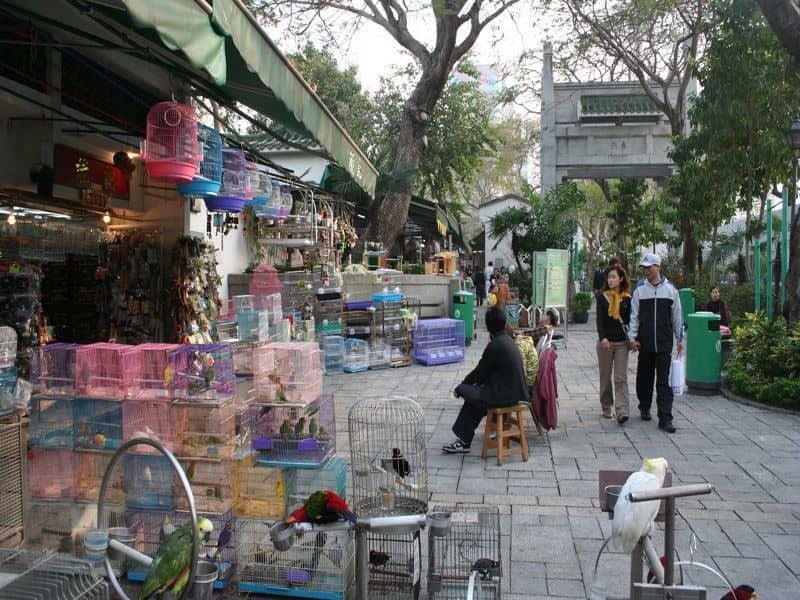 Photo of Market Day in Hong Kong, china