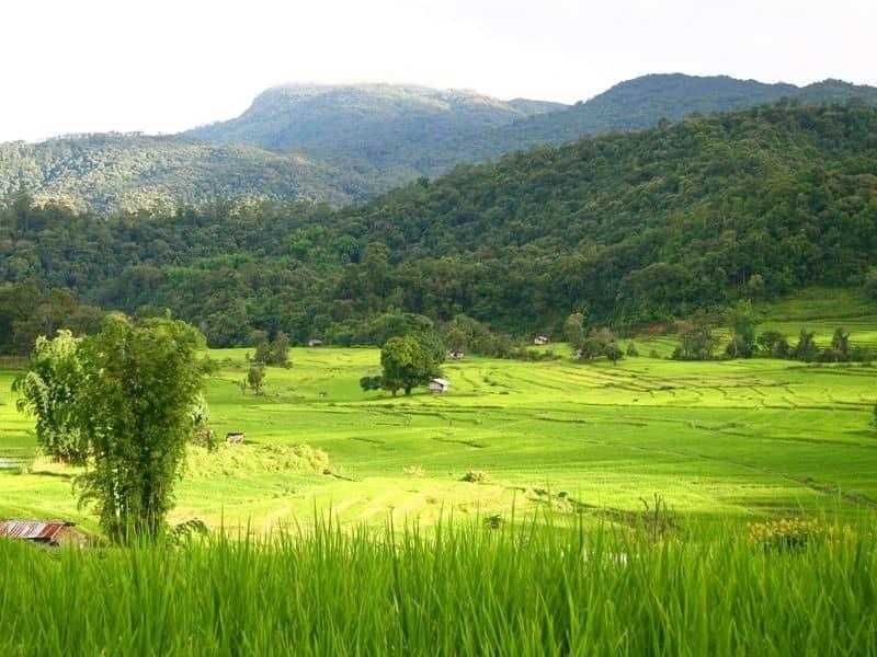 Photo of Chiang Mai Beautiful Countryside Tour, thailand