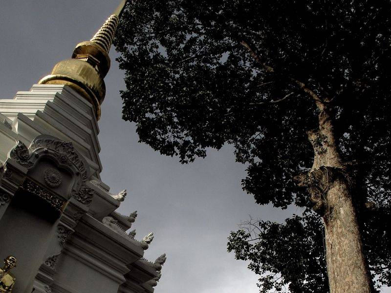 Photo of Chilled Chiang Mai, thailand