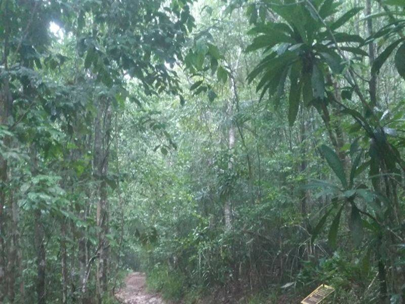Photo of The Unseen Natural Trail (PVT), thailand