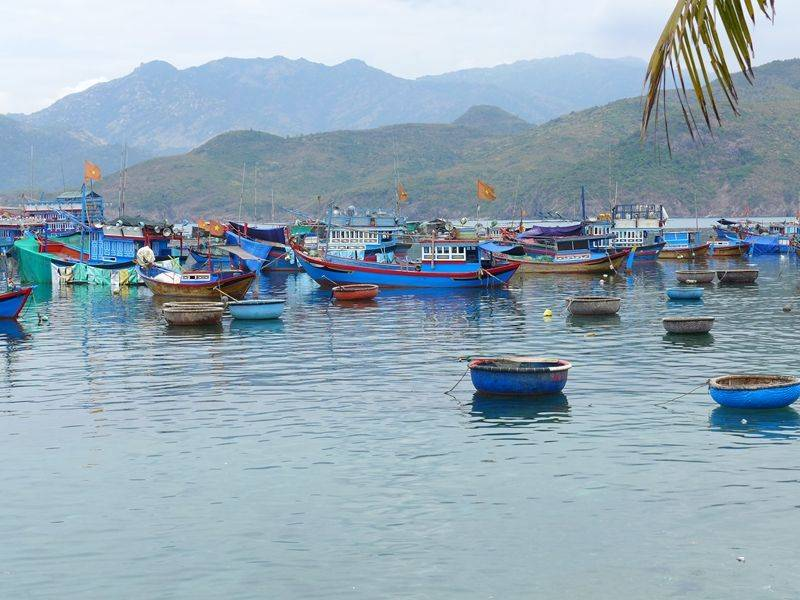 Photo of Nha Trang Discovery Day Cruise, vietnam
