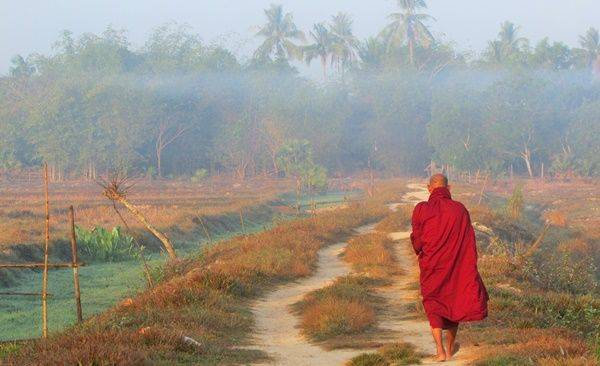 Tour Highlights for Explore Irrawaddy Delta by Bicycle