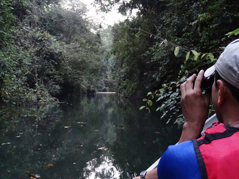 Photo of BACK TO NATURE – ULU MUDA ESCAPE
