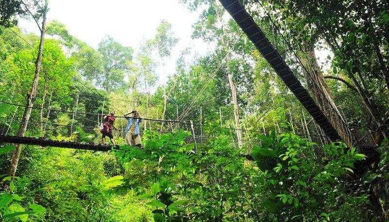 Photo of Cuisine, Homestay and Jungles - Northern Malaysia, Malaysia