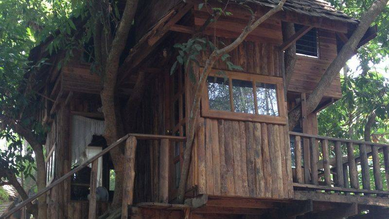 Photo of Tree Top Living Chiang Mai - 3 Days / 2 nights, Thailand