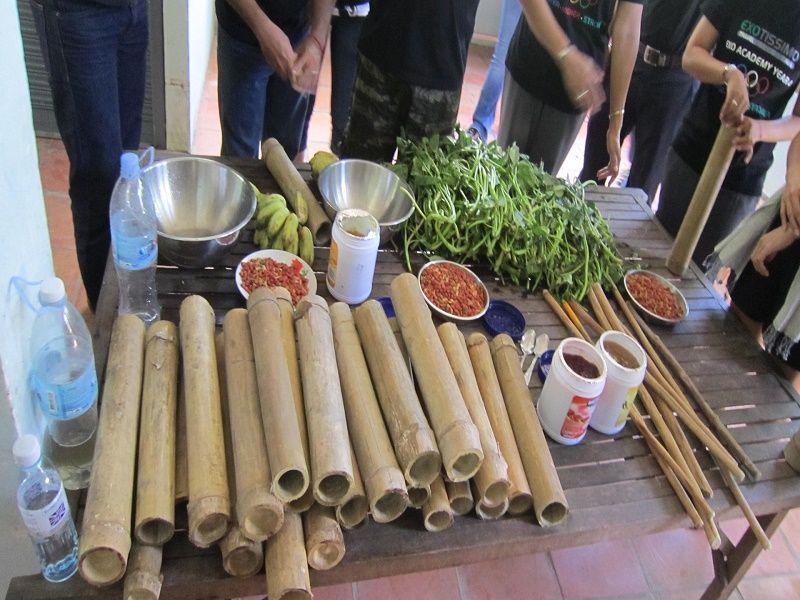 Photo of Free The Bears At Phnom Tamao, cambodia