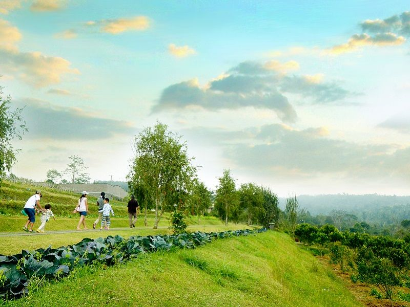 Photo of Bali Coffee, Vistas and Culture, indonesia