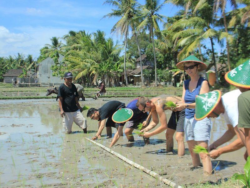 Photo of Explore Jogja's Countryside, indonesia