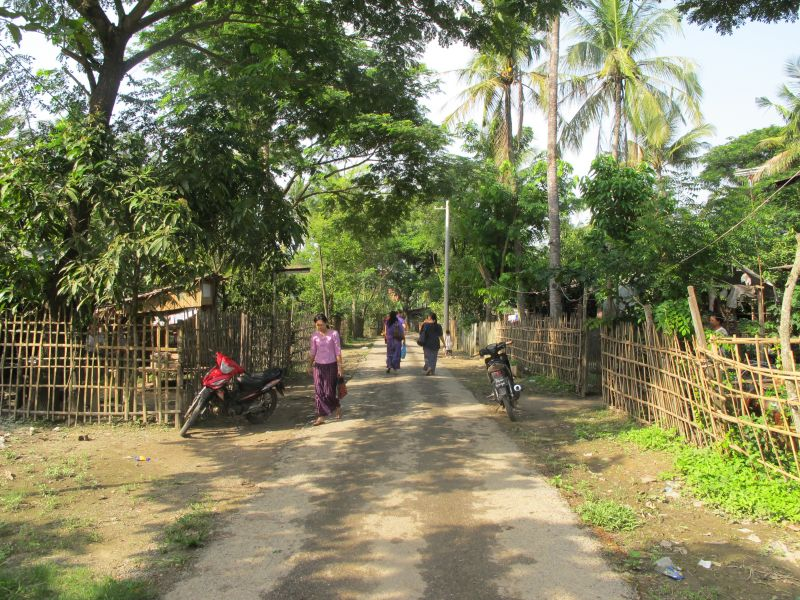 Photo of Colors of the Countryside: Dhala Excursion, myanmar