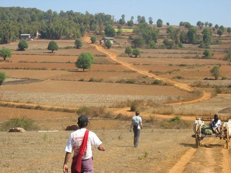 Photo of Trekking near Inle Lake: Kalaw, Pindaya or Inle, myanmar