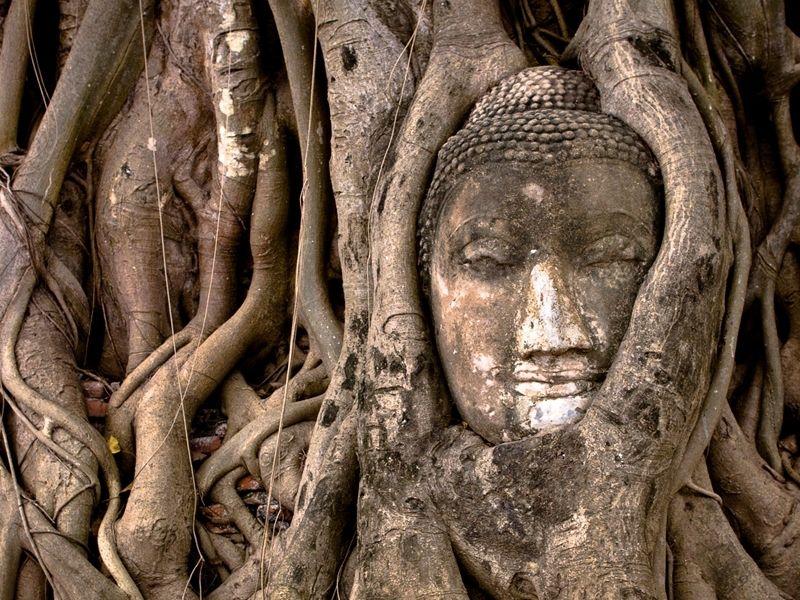 Photo of Ayutthaya Insight by Train, thailand