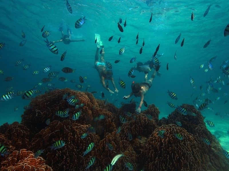 Photo of Unseen Snorkelling off Koh Yao Islands, thailand
