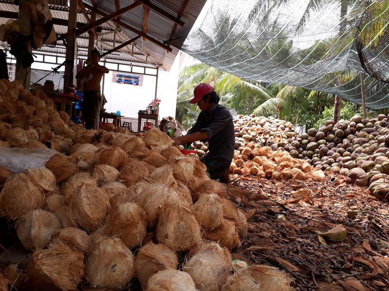 Photo of - Ben Tre in Depth, vietnam