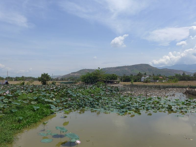 Photo of Explore Nha Trang's Countryside by Bicycle, vietnam