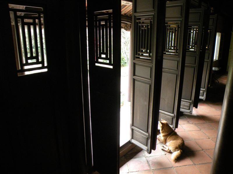 Photo of Royal Cooking Class at a Garden House, vietnam