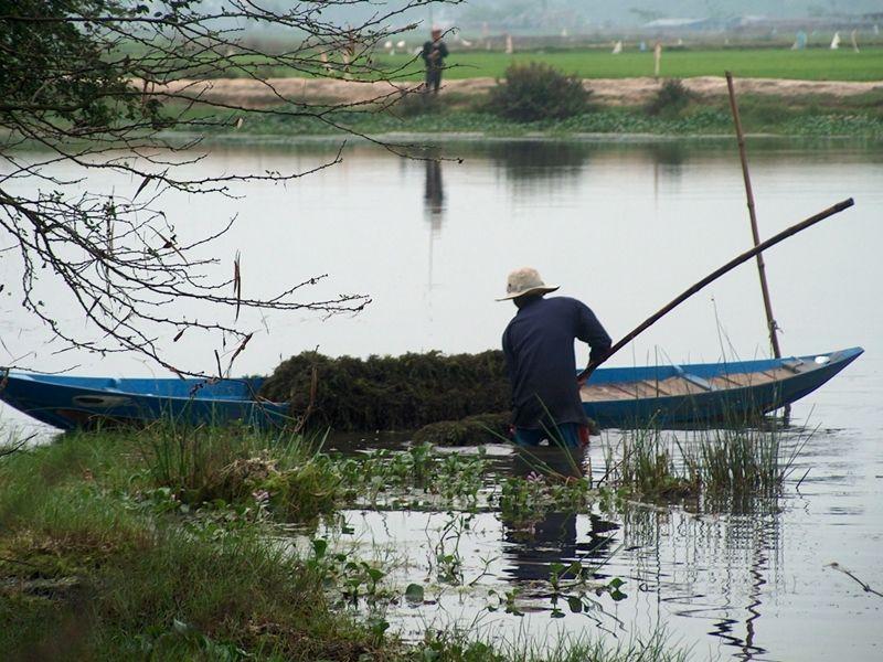 Photo of Tra Que Vegetable Village Hoi An, vietnam