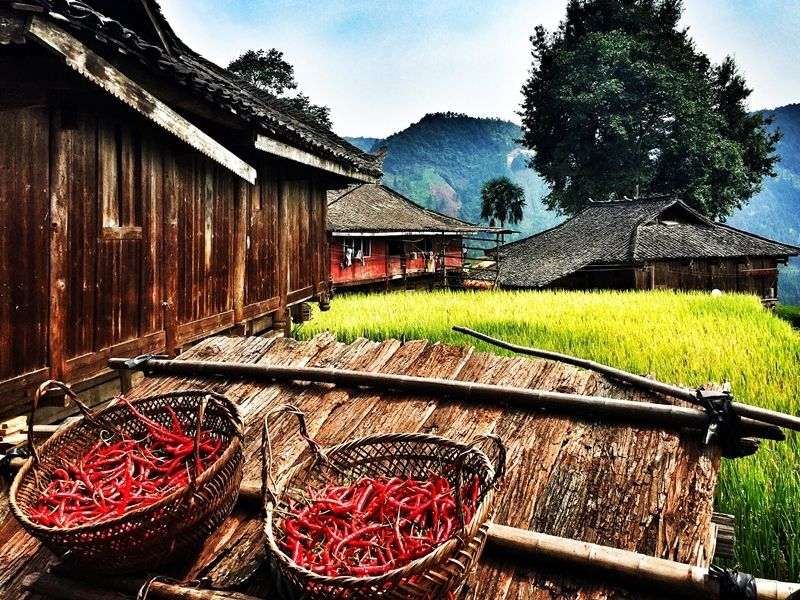 Insight of Ethnic Villages in Guizhou, China