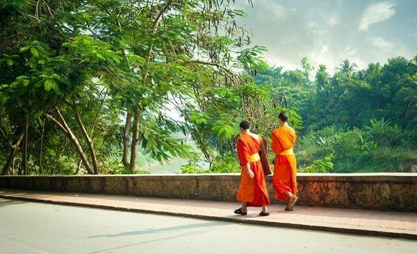 Tour Highlights for Trekking - Luang Prabang Cultural Encounters