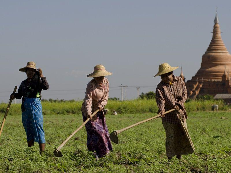 Photo of Bagan Explorer, Myanmar