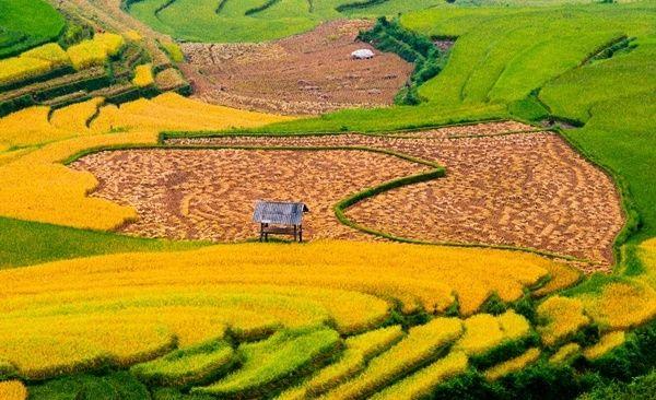 Tour Highlights for Trekking Vietnam's Northeast Mountains Ha Giang