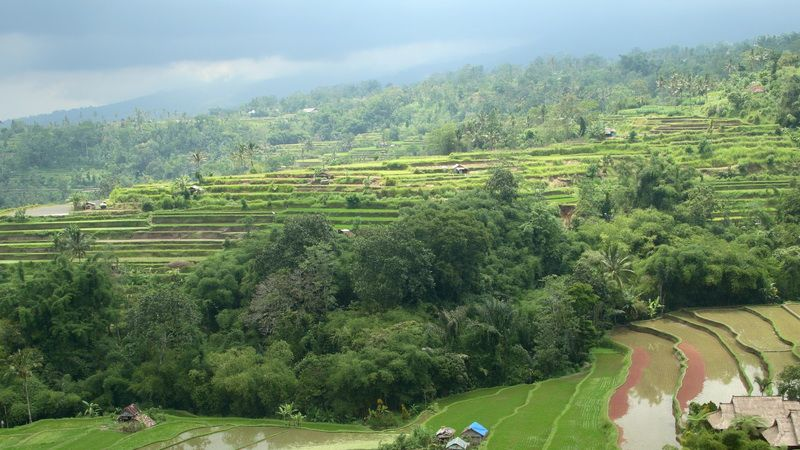 Photo of Highlights of Bali - 5 Days  / 4 Nights, Indonesia