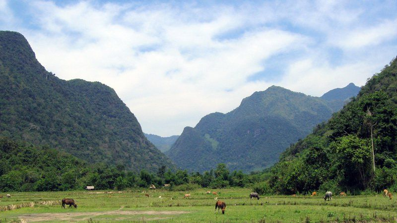 Photo of Multisport Defying The Cliffs in Vang Vieng, Laos
