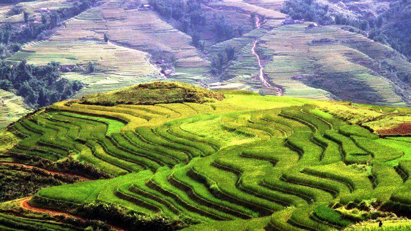 Photo of Trekking Vietnam's Notheast Mountains Ha Giang - s, Vietnam